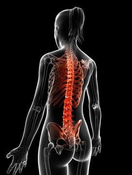 rf-image7-spine